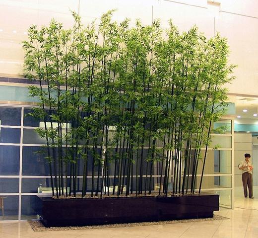 D coratif en plastique int rieure et ext rieure for Faux bambou plante