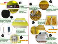 Инкубатор для куриных яиц Vena Incubator va/48 VA-48