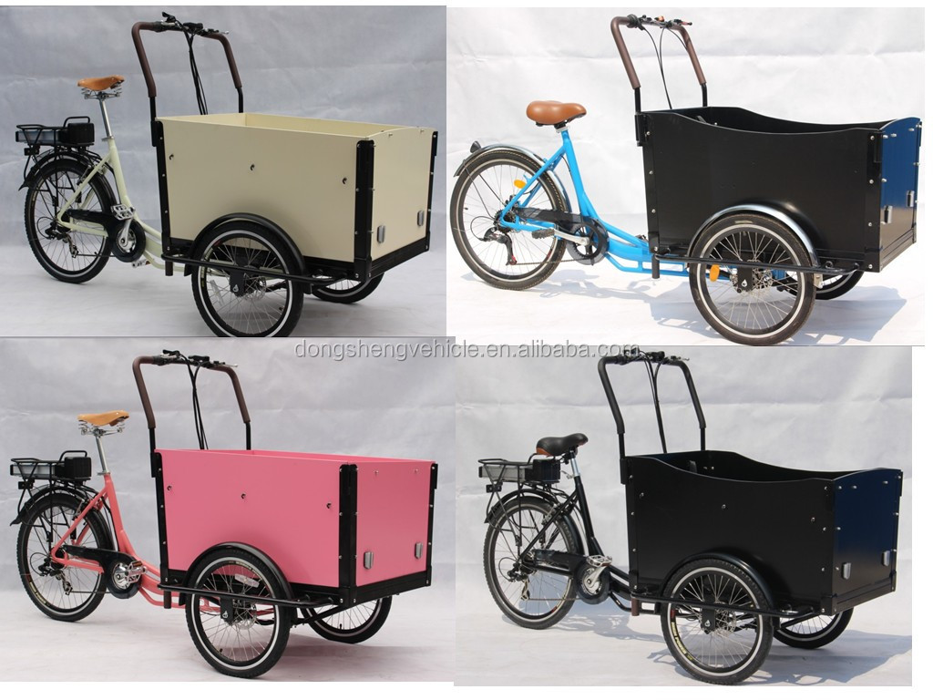 front box cargo bike/trike for kids and loved pet DS-T05