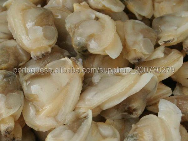 carne de molusco congelado para venda