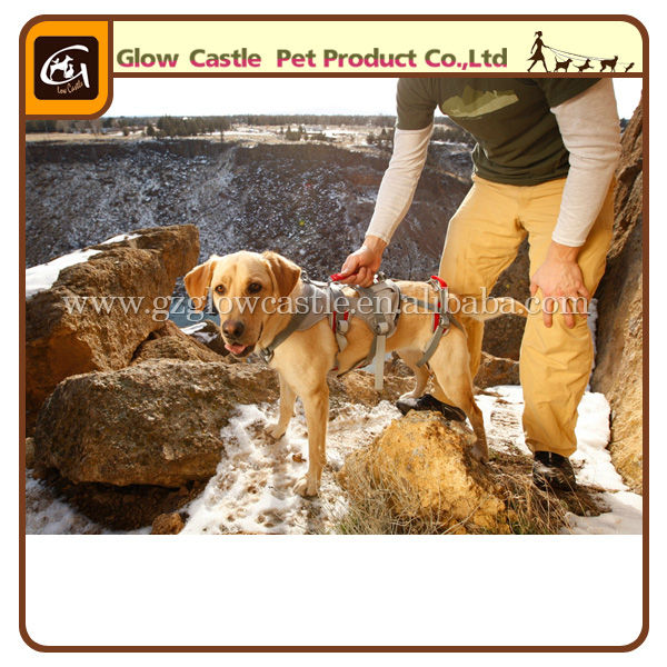 Glow Castle Outdoor Dog Harness (5).jpg