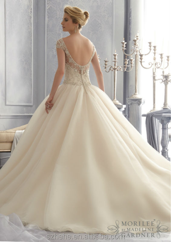 blinged out ball gown wedding dresses | Luxury Hotels In Mount Abu