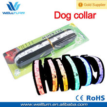 Shenzhen Factory Amazon Best Seller Pets Protection LED Dog Collar Leash