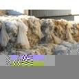 LDPE film in bale ( agri )