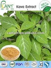 Natural extracto de kava de 30% kavalactonas ( amoniocas.: 84696 - 40 - 2 )