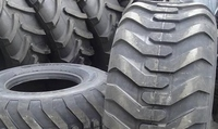 Cheap Goods from China Agricultural tire 16.9-24