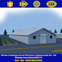 broiler layer chicken design poultry farming