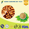 china natural product soybean extract reduce fatigue function