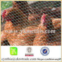 hot dipped galvanized hexagonal wire mesh on sale(factory)