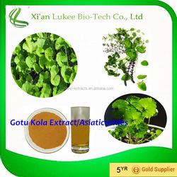 100% Natural high quality Raw materials gotu kola extract with Asiaticoside Centella Asiatica Extract Powder 10%- 80%