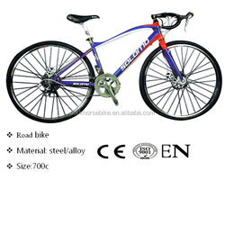 road racing bike, name brand racing bike, 250cc racing bike