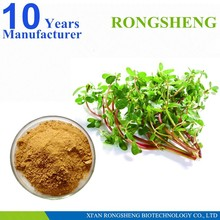 High Quality Natural Portulaca Oleracea Extract