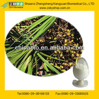 GMP Factory Supply 100% Natural Saw Palmetto Extract