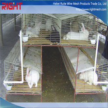 Quality products build aluminum rabbit cage in kenya farm
