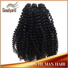 Best selling grade 7a brazilian unprocessed virgin hair afro kinky human hair