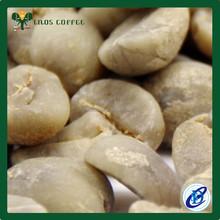 arabica e robusta verde chicchi di caffè per la vendita