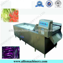 Special Hotel Supplied Vegetable washing Machine