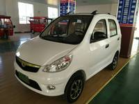 Electric Fuel and New Condition auto eletrical car