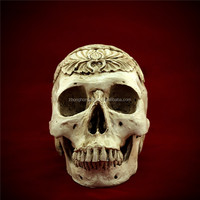 2015 Egypt Human Skull Replica Resin Model Medical Realistic lifesize 1:1 Halloween