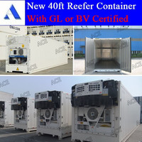 Reefer and dry container for carrier brand