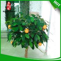 Manufacturer supply orange blossom flower