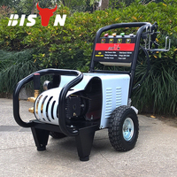BISON CHINA portable high pressure car washer handy pressure washer