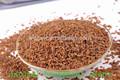bulk trigosarraceno chá para o presente negócio