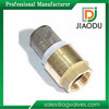 chinese manufacture cuatomized forged1/4'' or 1/2'' or 1 inch brass foot valves for water pumps