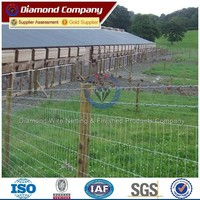 2015 Hot sale Pasture Wire Mesh Fencing Hot dipped Galvanized