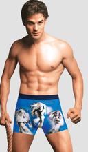 2012 Hot Sexy Man Boxer Underwear Custom European Men's Underwear Custom Mature Men Underwear Boxer
