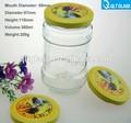 Vente en gros verre clair pot de miel/pot de sauce/piment bouteille/cornichon bouteille