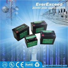EverExceed Standard Range dry battery 12v for ups