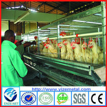 Chicken Bird Cages for 96-120 Birds / Breeding Equipment Chicken Cage with Automatic Systems (skype :yizemetal3)