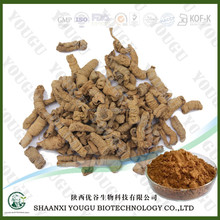 Herbal medicine extract manufacturer supply radix morindae officinalis extract
