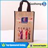 Alibaba China Fancy Non-Woven Shopping Bag/Laminated Shopping Bag