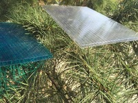 polycarbonate hollow sheet,Honeycomb polycarbonate sun panel,Building plastic sheet