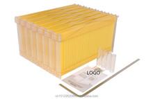 Nueva! plástico Bee hives abeja marcos de flujo de la colmena OEM / ODM