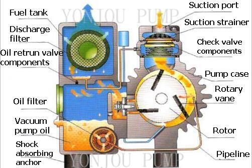 Single Stage Rotary Vane Vacuum Pump Oil Sealed Rotary