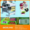 Vegetables cling film wrapping machine