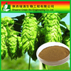 Black Cohosh Extract Triterpenoid Saponins powder 2.5%