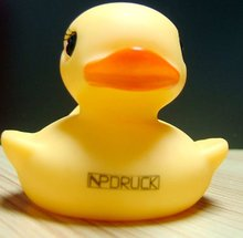 Chinese Popular Ducks with Money