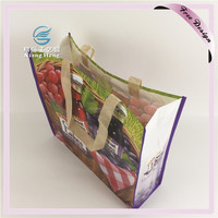 Professional Customized Waterproof PP Non Woven Shopping Bag