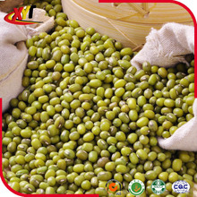 Non GMO green mung beans with kinds of size