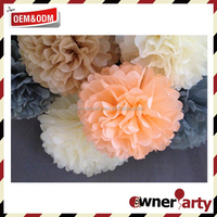 Top Sale High Quality Beautiful Diy Paper Pom Poms