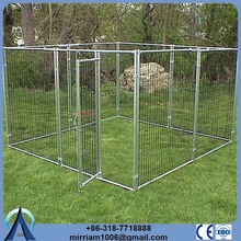 Chain Link or galvanized comfortable 6x10x6 dog kennels for dog