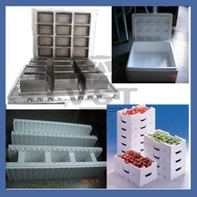 High quality Vegetable box mold/fruit basket mold EPS Mould