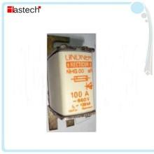 100A 660V NHG00 aR LINDNER RECTICUR fuse