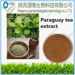 HOT SALE natural Ilex paraguariensis/ParaguayTea plant extract/Yerba Mate Extract powder