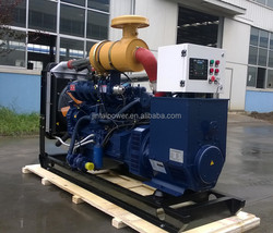 8-1000kw natural generator gas price with bottom price
