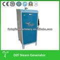 Mini generador de vapor